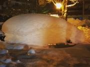 Een overvloed aan sneeuw