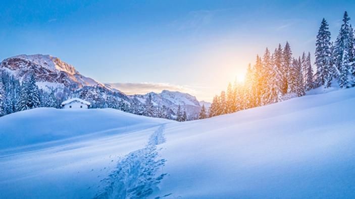 Kerst bij Sunweb