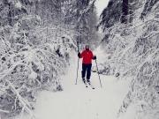 Sneeuwpret in Nederland