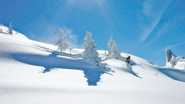 Wintersport skigebied Shuttleberg Flachauwinkl-Kleinarl