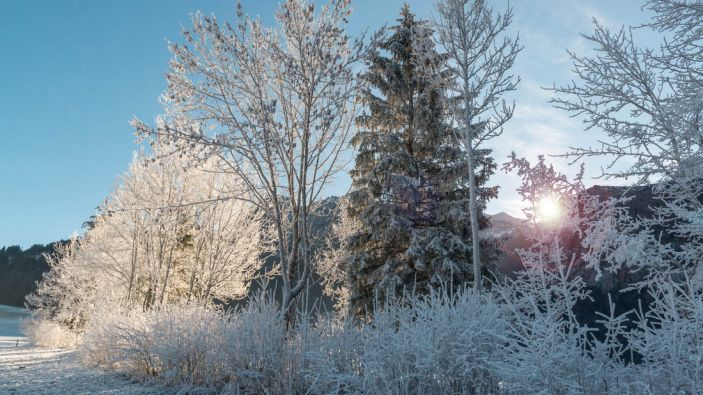 Wintersport skigebied Abtenau-Karkogel