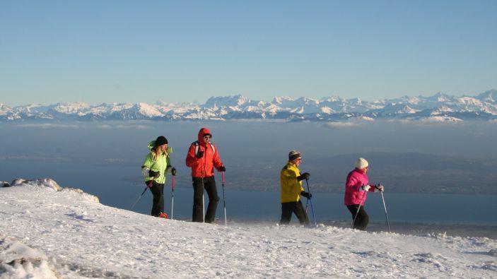 Wintersport Les Dappes