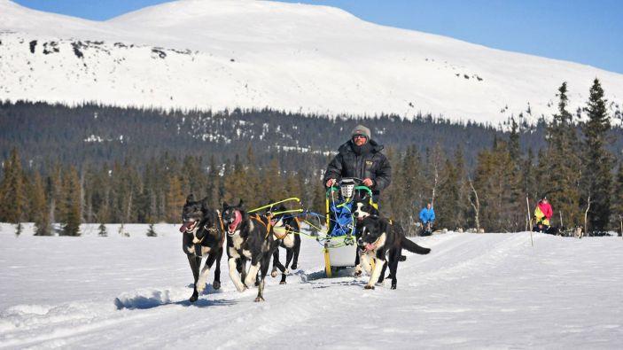 Wintersport skigebied Trysil