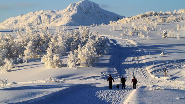 Wintersport Skigebied Beitostølen Skiområde