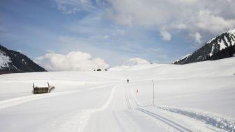Wintersport Berwang