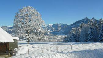 Wintersport Bulle