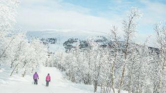 Wintersport Geilo