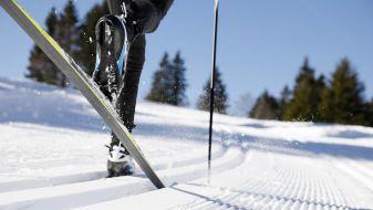 Wintersport La Faucille