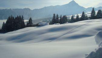 Wintersport Tschappina