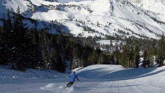 Wintersport Utah - Alta Ski Area