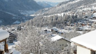 Wintersport Fiesch