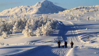 Wintersport Beitostølen