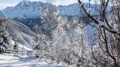 Wintersport La Forêt Blanche - Vars les Claux