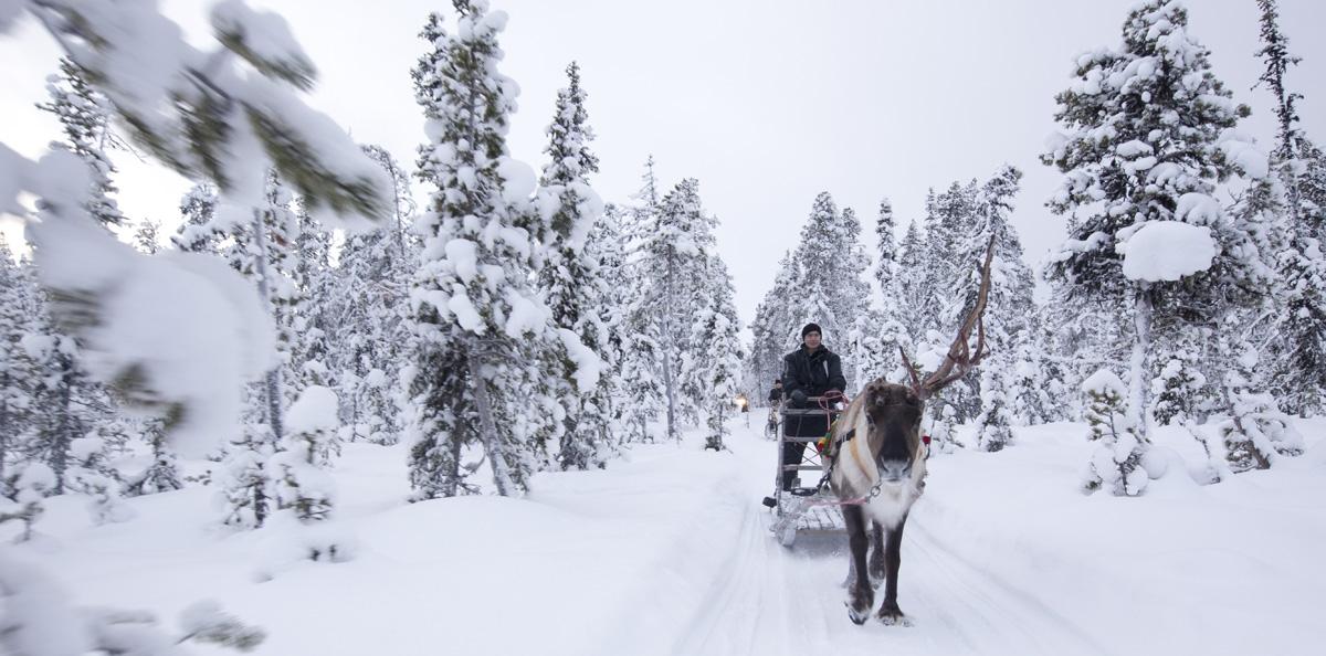 Ontdek Lapland met Nordic