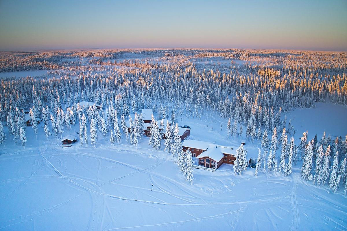 Pinetree Lodge - Zweeds Lapland