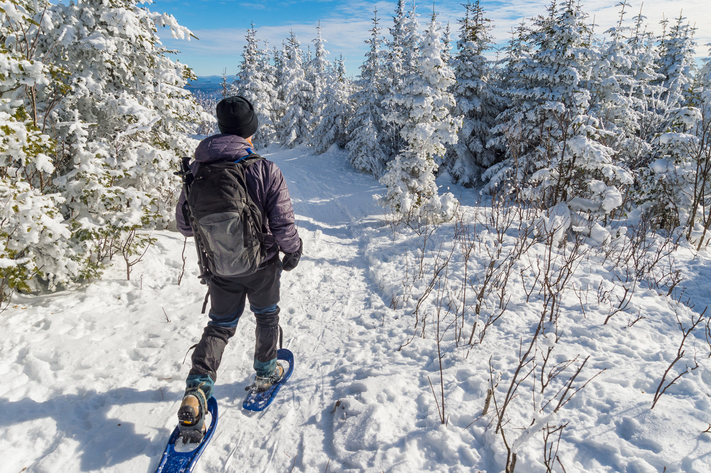 Sneeuwwandelen met SNP Natuurreizen