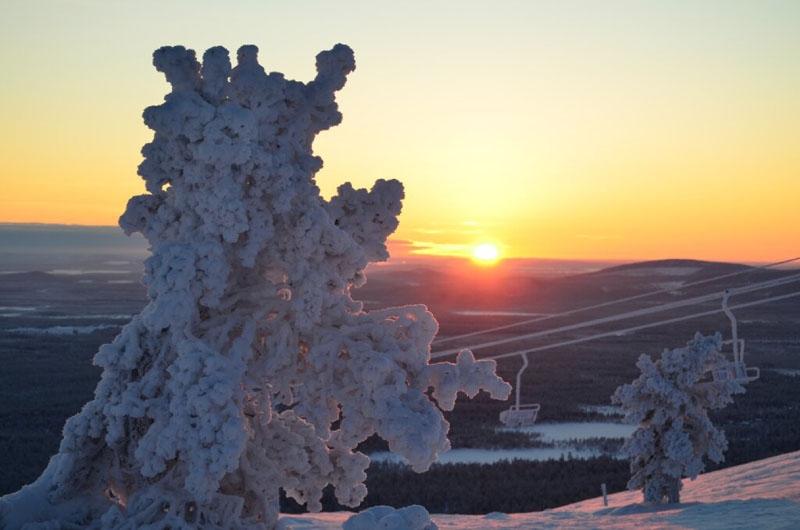 Sprookjeswereld in winters Lapland - Landschap